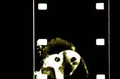 Digital photo of 16mm film frame, before cropping and colour harmonisation